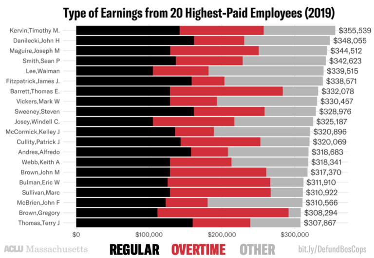 Type of earnings for 20 highest-paid employees